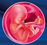 18 неделя беременности женщины