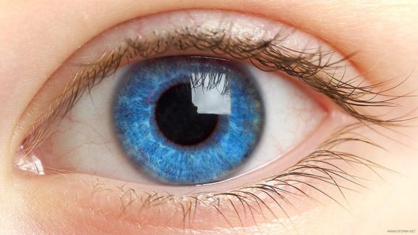 Голубые глаза человека
