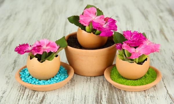 Цветы как украшение стола на Пасху