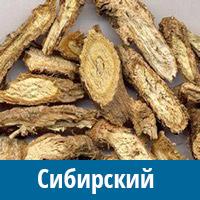 Сибирский женьшень - элеутерококк